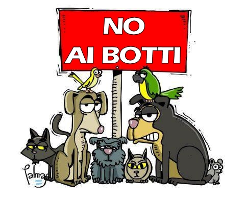 no ai botti